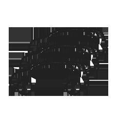 Icon Fahrzeugflotte