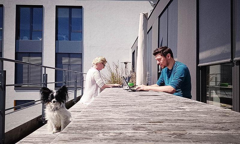 Schöner, größer, Dachterrasse: The Mobility House ist umgezogen