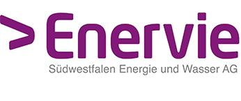 Logo Mainzer Stadtwerke