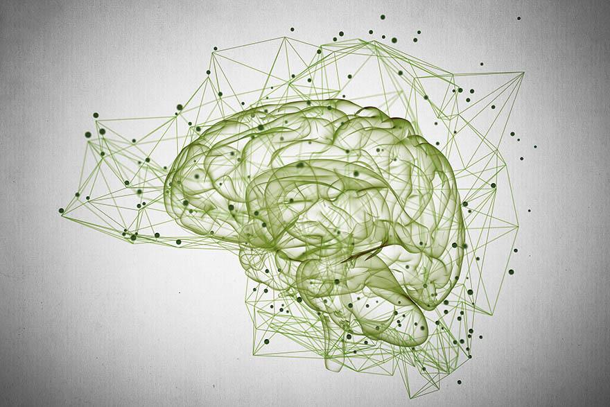 Intelligente Vernetzung im Gehirn