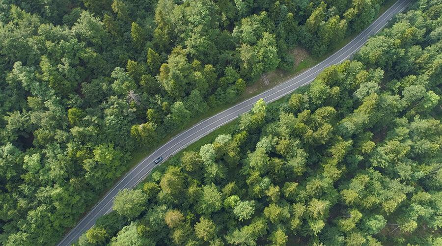 Auto auf der Fahrt durch eine Waldgegend